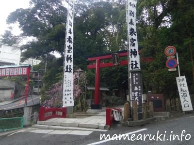 来宮神社|熱海市