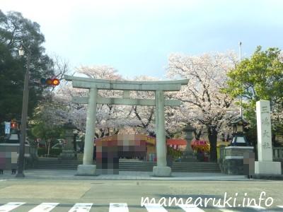 三嶋大社|三島市