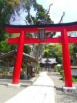 伊古奈比咩命神社(白濱神社)