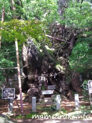 葛見神社3