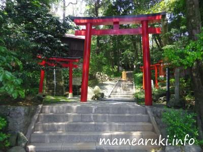 伊古奈比咩命神社(白濱神社)5