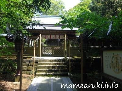 伊古奈比咩命神社(白濱神社)6