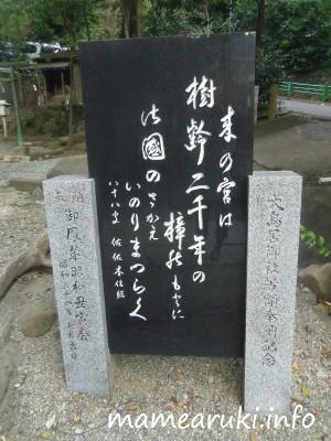 佐佐木信綱歌碑|来宮神社