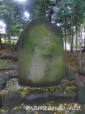 松尾芭蕉句碑|三嶋大社