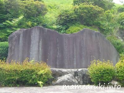oomuroyama1