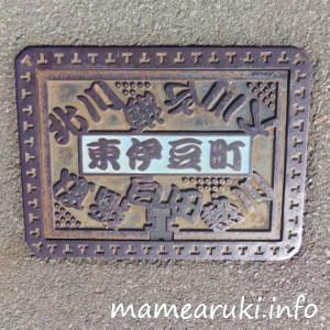 賀茂郡東伊豆町|マンホール