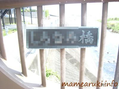 izukyuwalk10_08_02