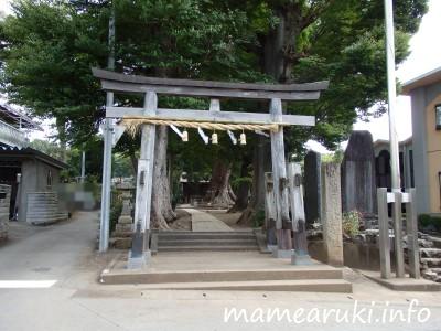 天地神社|田方郡函南町